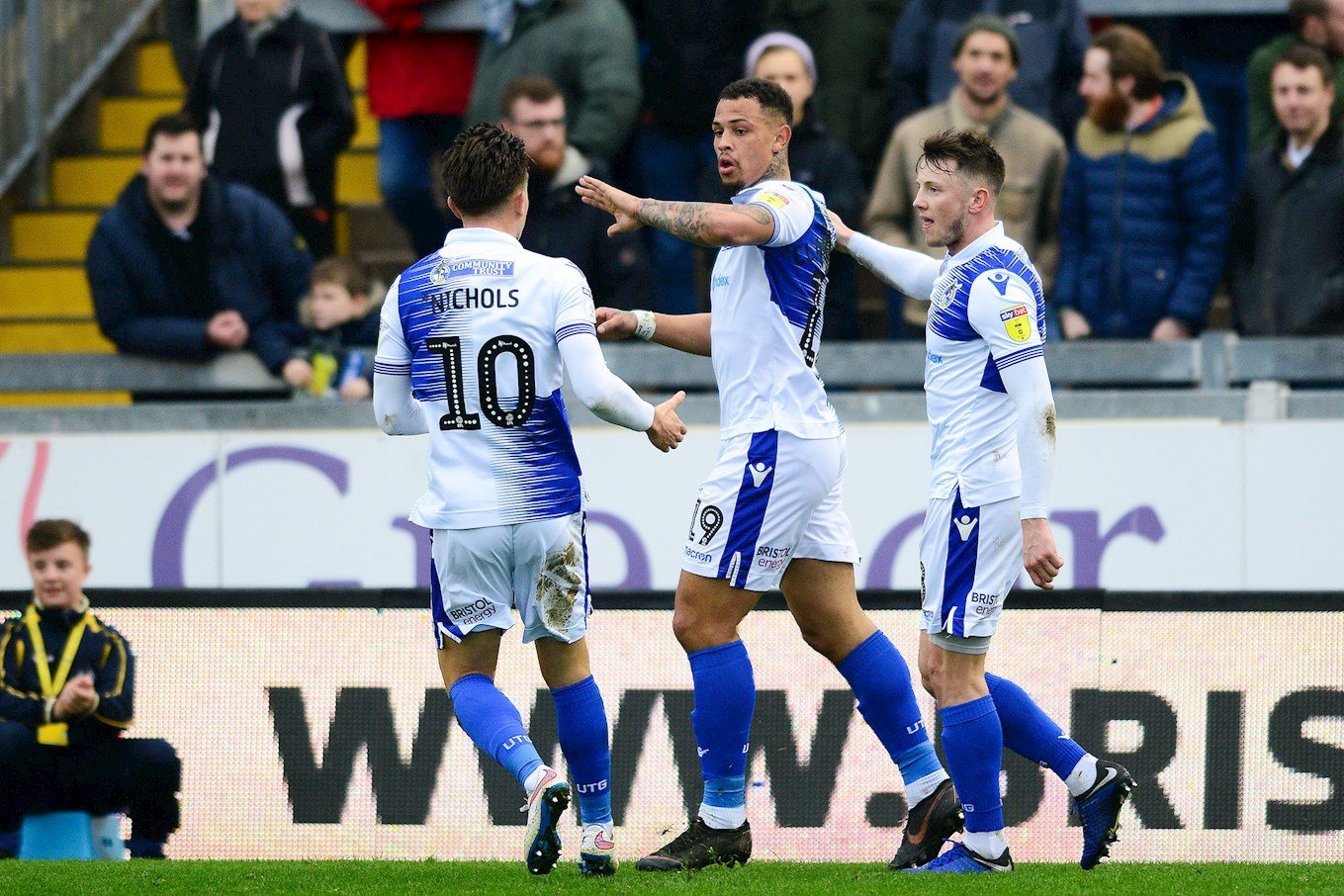Image result for bristol rovers